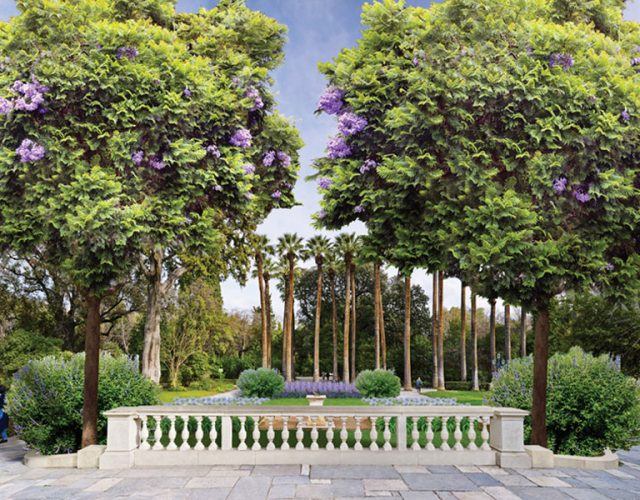 the-national-garden-of-athens-4