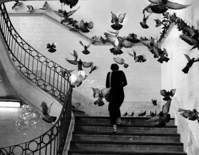fotonerd-Henri-Cartier-Bresson-Venezia-2020-2