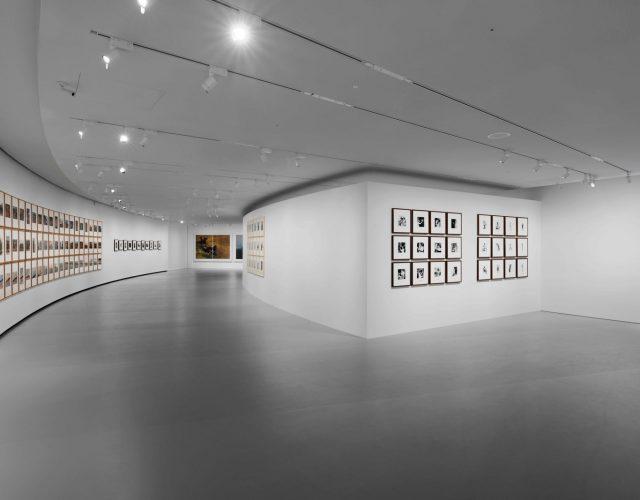 Galerie20320-20Vue20de20l'exposition20_20Levine,20Prince,20Journiac